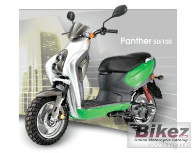 2008 Adly Panther 100
