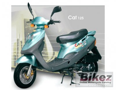 2009 Adly Cat 125S photo