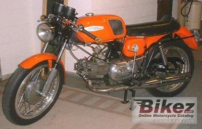 1971 Aermacchi 350 TV