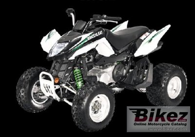 2009 Arctic Cat 300 DVX