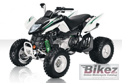 2010 Arctic Cat 300 DVX photo
