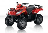 2010 Arctic Cat 300