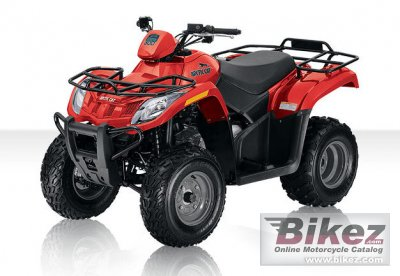 2010 Arctic Cat 300 photo