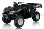 2010 Arctic Cat TBX 700 H1 EFI photo
