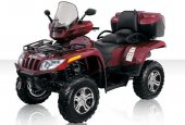 2010 Arctic Cat TRV 1000 H2 EFI Cruiser photo