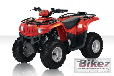 2010 Arctic Cat 90 Youth