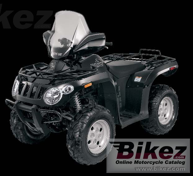 Arctic Cat 366 se