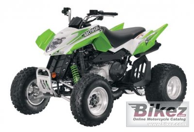 2011 Arctic Cat 300 DVX photo