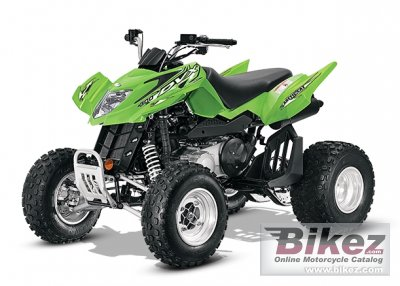 2014 Arctic Cat DVX 300 photo