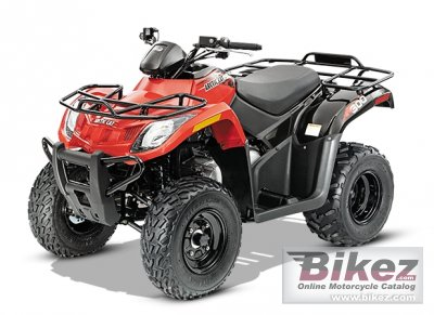 2014 Arctic Cat 300 photo