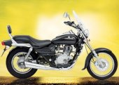 2008 Bajaj Avenger DTS-i photo