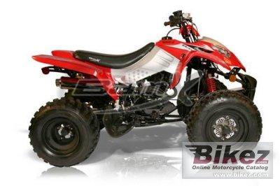 2010 BamX BX250-S1 Assault