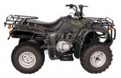2012 BamX BX250-U Back Country photo