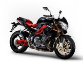 2010 Benelli Tornado Naked Tre 1130 Sport Evo photo