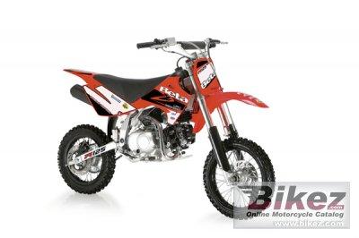 2010 Beta Minicross R125