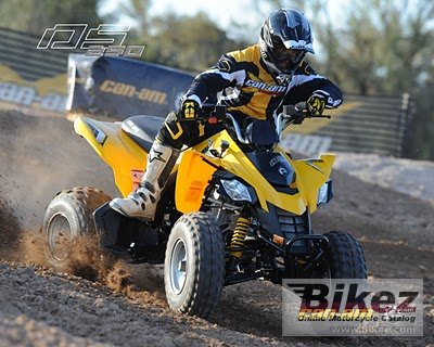 2009 Can-Am DS 250 photo
