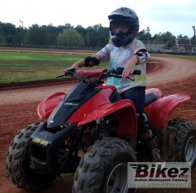 2009 Can-Am DS 90