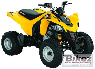 2010 Can-Am DS 250 photo