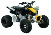 2010 Can-Am DS 90 X photo