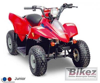 2009 Clipic Quad Mini Rex 50