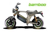 2013 Clipic Bamboo
