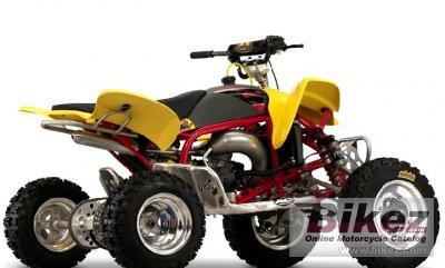 2009 Cobra ECX70