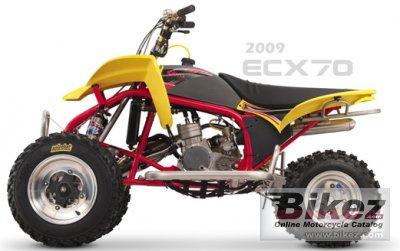 2010 Cobra ECX70