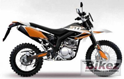 2010 Dafier STF 125 photo
