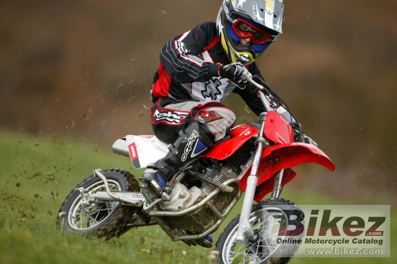 2006 Derbi Dirt Kid 12