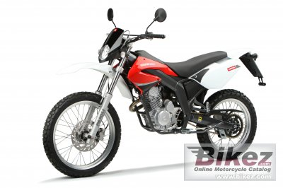2010 Derbi Senda Baja 125R photo