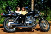 2008 Diamo Cruiser 250 photo