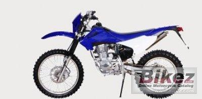 2008 Diamo RS250