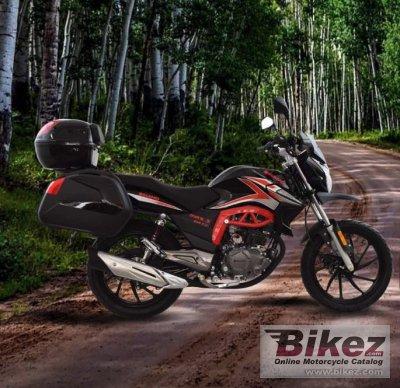 2020 Dinamo Max-3 200