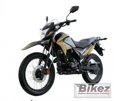 2020 Dinamo Scorpion  200