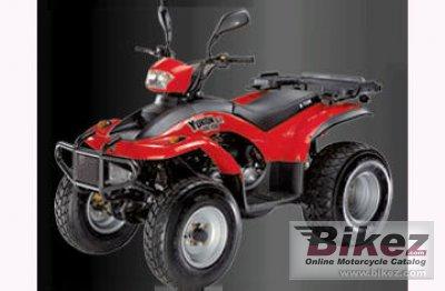 2010 E-Ton Yukon ST Exl-150