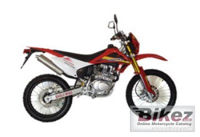 2010 Eagle-Wing PY 250 Red photo