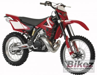 2008 GAS GAS EC 250 photo