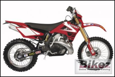 2008 GAS GAS EC 300 Racing