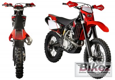 2009 GAS GAS EC 450 FSR photo
