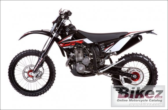 2010 GAS GAS EC 450 4T photo