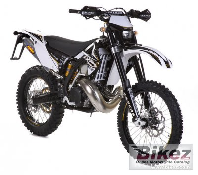 2010 GAS GAS EC 250 2T Racing photo