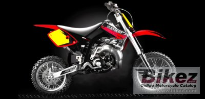 2010 GAS GAS MC 65 Cross Country photo
