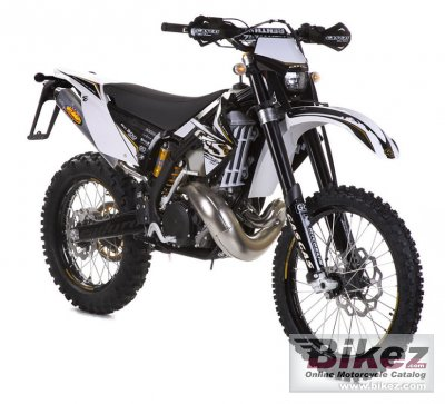 2010 GAS GAS EC 125 2T Racing
