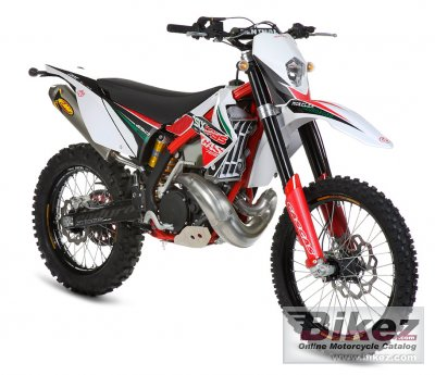 2011 GAS GAS EC 300 2T Six-Days photo