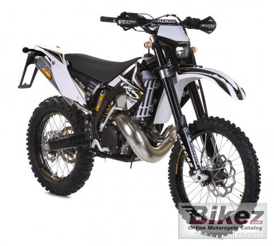2011 GAS GAS EC 250 Racing photo