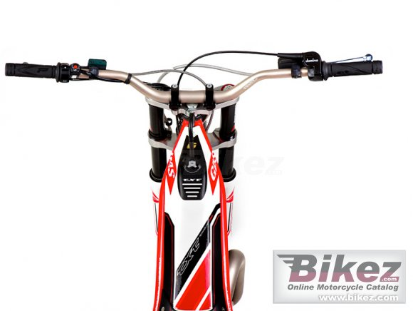 2012 GAS GAS TXT Pro 250 photo