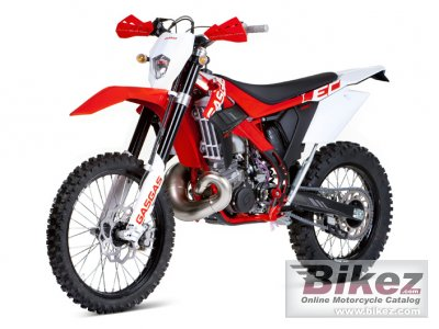 2012 GAS GAS EC 250 photo