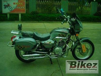 Gogo Moto MT 150