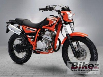 2020 Hamachi Cossack 250