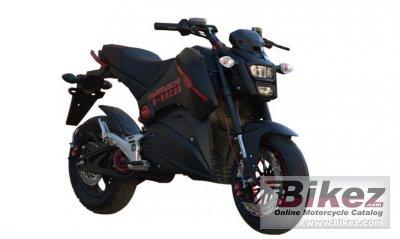 2020 Hamachi E-Racer X